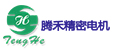 腾禾精密电机(昆山)有限公司